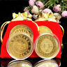AS_ FJ- NEW PIG YEAR FORTUNE COMMEMORATIVE COIN HOLIDAY SEASON SOUVENIR GIFT FIR