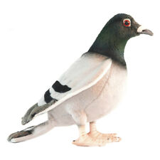 29cm L Hansa Pigeon Realistic Hand-crafted Soft Animal Plush Toy Gift