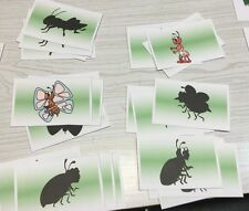 Insects Shadow Match Cards - Laminated Activity Set - Teaching Supplies