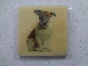Jack Russell Dog Square Fridge Magnet.