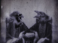 Victorian Gothic Anthromorphic Ravens Corvids Strange Birds Rare Vintage Print
