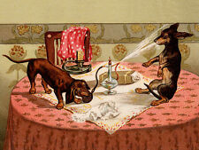 DACHSHUND CHARMING DOG GREETINGS NOTE CARD CUTE DOGS PLAY WITH PERFUME SPRAY