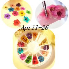 12 Color Rueda Secas Flores Flower Decoración Para Uñas Caja Manicura Nail Arte