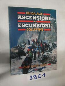 Nardi GUIDA ALLE ASCENSIONI E ALLE ESCURSIONI COLLETTIVE (39C1)