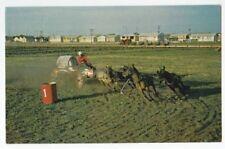 Saskatoon Sask Pony chuckwagon Chrome PC - Good 1974