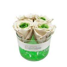 Preserved-WHITE-GREEN-Roses|Gift|Birthday|Wedding|Christmas|Decor|Long-Lasting|