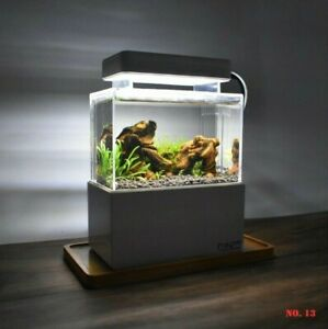 Mini Complete Tank' Paludarium-Terrarium -Nano Desktop Aquascape Fish Aquarium