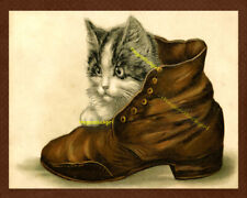 KITTEN IN SHOE 8x10 vintage Postcard cat art print reproduction picture