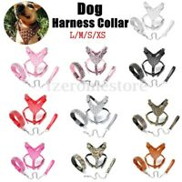 L/M/S/XS Leather Dog Harness Collar Leash Set Spiked Studded Terrier Staffy