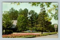 Pine Mountain GA, Callaway Gardens, Wildflowers, Chrome Georgia Postcard