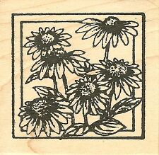 Cone Flower Square, Wood Mounted Rubber Stamp NORTHWOODS - NEW, CC9774