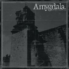 Amygdala - Our Voices Will Soar Forever