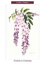 Original greeting cards (pkt 10) by artist Patricia Ball - Exotic flowers