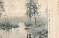 MILLVILLE NJ – Maurice River near the Dam – udb – 1906