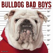 Bulldog Bad Boys (dog breed calendar) 2021 Wall Calendar(Free Shipping)