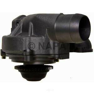 Engine Water Pump-DIESEL NAPA/TRU FLOW WATER PUMPS-TFW 43273