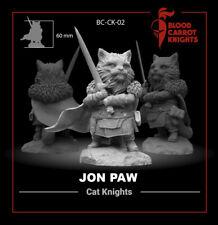 JON PAW cat 54mm miniature by BloodCarrotKnights resin kit