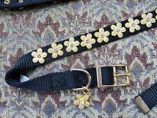 Gold and Rhinestone Stately Dog Collar Fox Hounds Ltd XL Size Unisex