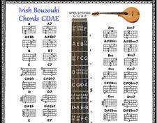 Irish Bouzouki