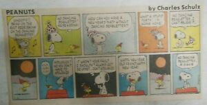 (15) Peanuts Sunday Pages by Charles Schulz from 1979 Size: ~7.5 x 14 inches