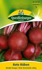 Onorevole Fothergills pittorica pacchetto Verdura Succo Di Barbabietola Detroit 2 CRIMSON 150 semi