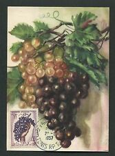 TUNESIEN MK 1957 FLORA TRAUBE GRAPE UVA WINE MAXIMUMKARTE MAXIMUM CARD MC d3541