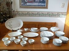 Seyei China Japan ~ Bamboo Garden ~ 65 Piece Set ~ Service for 8 Plus