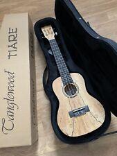 RRP £209 Super Quality Spalted Maple Concert Ukulele Arched Back + hard case