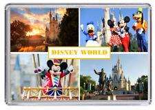 Disney World, Florida Fridge Magnet Free Postage