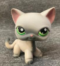 Littlest Pet Shop #125 Siamese Cat