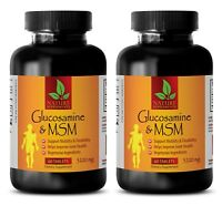 Glucosamine Sulfate & MSM - Mobility, Flexibility, Joint Support - 2 Bottles