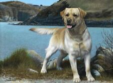 More details for limited edition signed giclée prints coast guard yellow labrador  nigel hemming