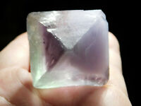 A Larger! Very Translucent ICE GREEN / PURPLE Octahedron FLUORITE Crystal 106gr