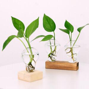 Glass Tube Vase Wooden Stand Flower Pots Hydroponic Planter Wooden1 Bottle