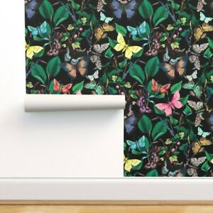 Removable Water-Activated Wallpaper Butterfly Bugs Butterflies Black Large