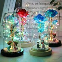 Galaxy Rose Led Lights Fairy Glass Crystal Dome Flower Girlfriend Mom Wife Gift
