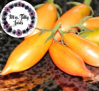 Tomate ARTISAN PINK TIGER Tomatensamen Saatgut 10 Samen TOP SORTE! Selten lecker