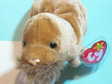 BEANIE BABY SEA WALRUS PAUL DATE OF BIRTH: FEBRUARY 23, 1999  1999   TY INC., OA
