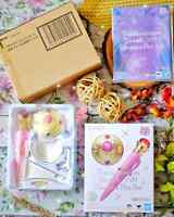 Sailor Moon Brooch & Disguise PROPLICA Set Proplica BANDAI Tamashii in Brown Box