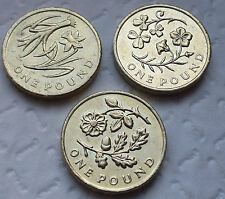 SET OF 3 FLORAL £1 ONE POUND COIN HUNT - ENGLAND WALES N IRELAND >>>