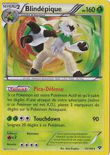 Blindépique Holo - XY - 14/146 - Carte Pokemon Neuve - Française
