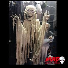 Animated LIFE SIZE Talking Skeleton - Halloween Horror Decoration / Prop Mummy