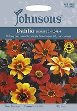 Johnsons Seeds Dahlia Bishops Children Seed