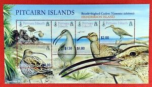 ZAYIX -Pitcairn Islands 681 MNH souvenir sheet - Marine Life - Sea Birds