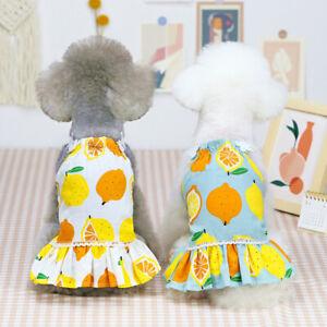 Pet Dog Cat Clothes Chihuahua Maltese Yorkshire Dress Dog Summer Lemon Dog Skirt