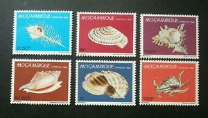 [SJ] Mozambique Marine Sea Shells 1980 Ocean Marine Life Underwater (stamp) MNH