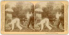 Stereo, Underwood & Underwood Publishers, Strohmeyer & Wyman, An Artist in his l