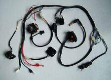 Complete Electrics ATV QUAD 200cc 250cc CDI Wire Harness Zongshen Lifan 2 Holes