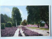 Ansichtskarte Lüneburger Heide Serie 110/4  (Nr.652)