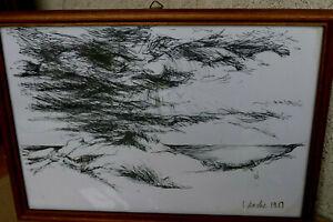 Sabine Zache 1938 Königsberg -  Zeichnung/Federzeichnung signiert Ahrenshoop